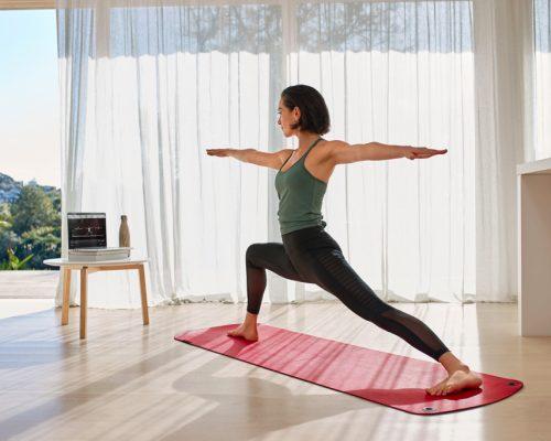 Online Ashtanga Yoga Class - Yoga Shala Heidelberg