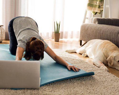 Online Yoga Therapy Classes - Yoga Shala Heidelberg