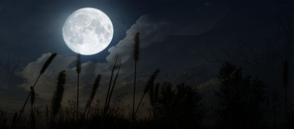 Moon Days - ashtanga yoga heidelberg